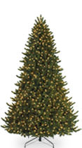 10-14 Foot Christmas Tree