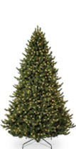 8-9 Foot Christmas Tree